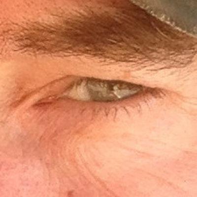 Profilbild von rookee