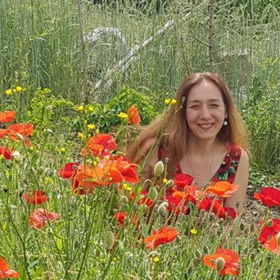 Profilbild von Irene-Stern