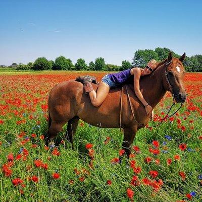 Horsegirl1792