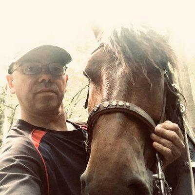 Profilbild von Pferdeverrückt