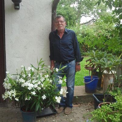 Profilbild von Kavalier